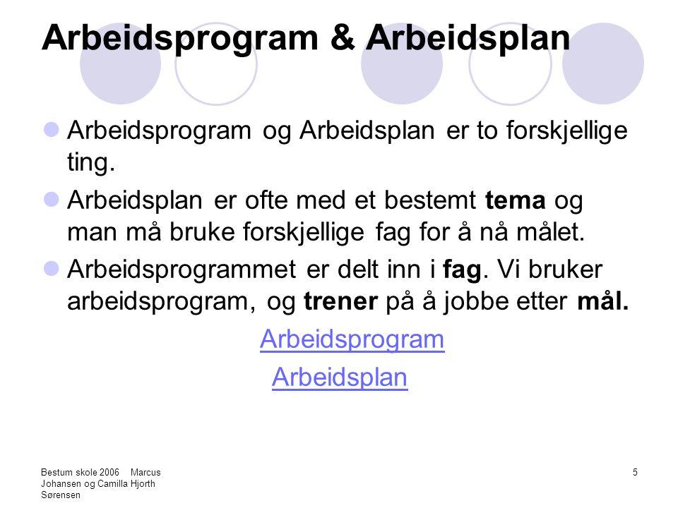 Arbeidsprogram & Arbeidsplan