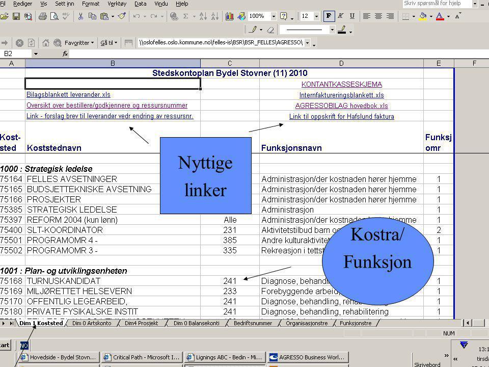 Nyttige linker Kostra/ Funksjon