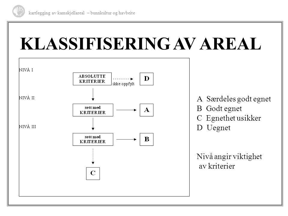 KLASSIFISERING AV AREAL