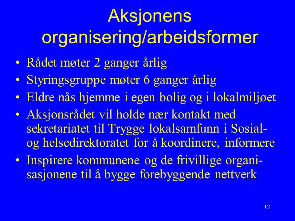Aksjonens organisering/arbeidsformer