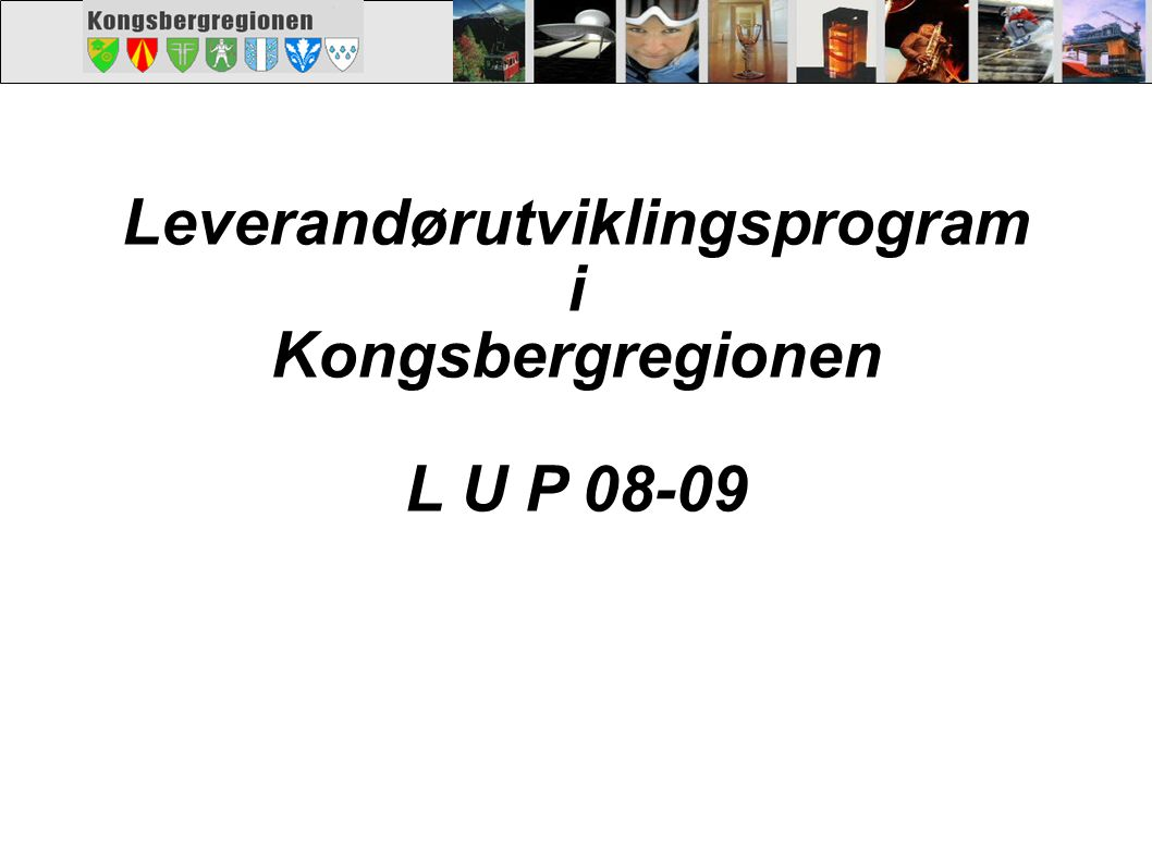 Leverandørutviklingsprogram