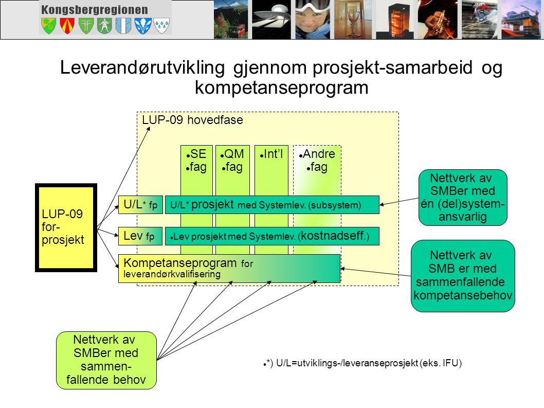 Leverandørutvikling gjennom prosjekt-samarbeid og kompetanseprogram