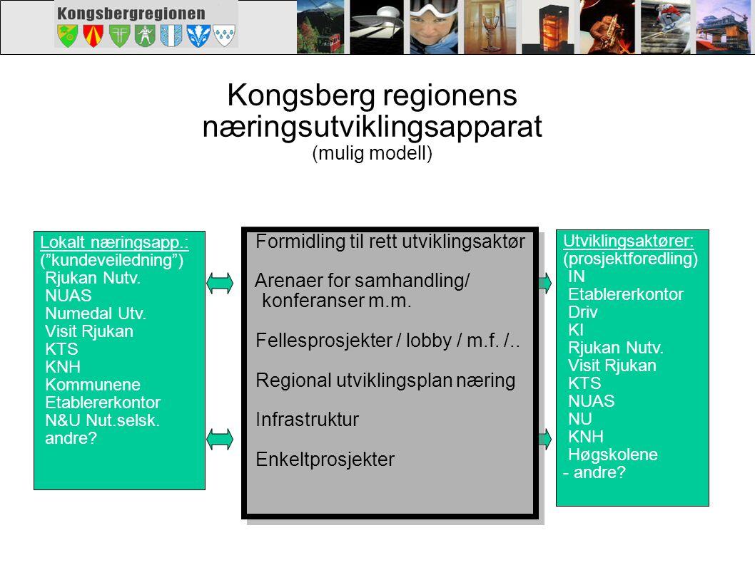 Kongsberg regionens næringsutviklingsapparat (mulig modell)