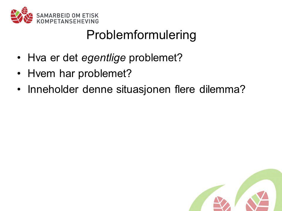 Problemformulering Hva er det egentlige problemet Hvem har problemet