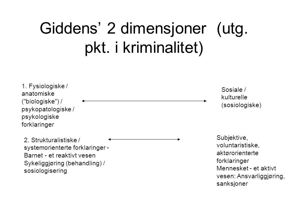 Giddens' 2 dimensjoner (utg. pkt. i kriminalitet)