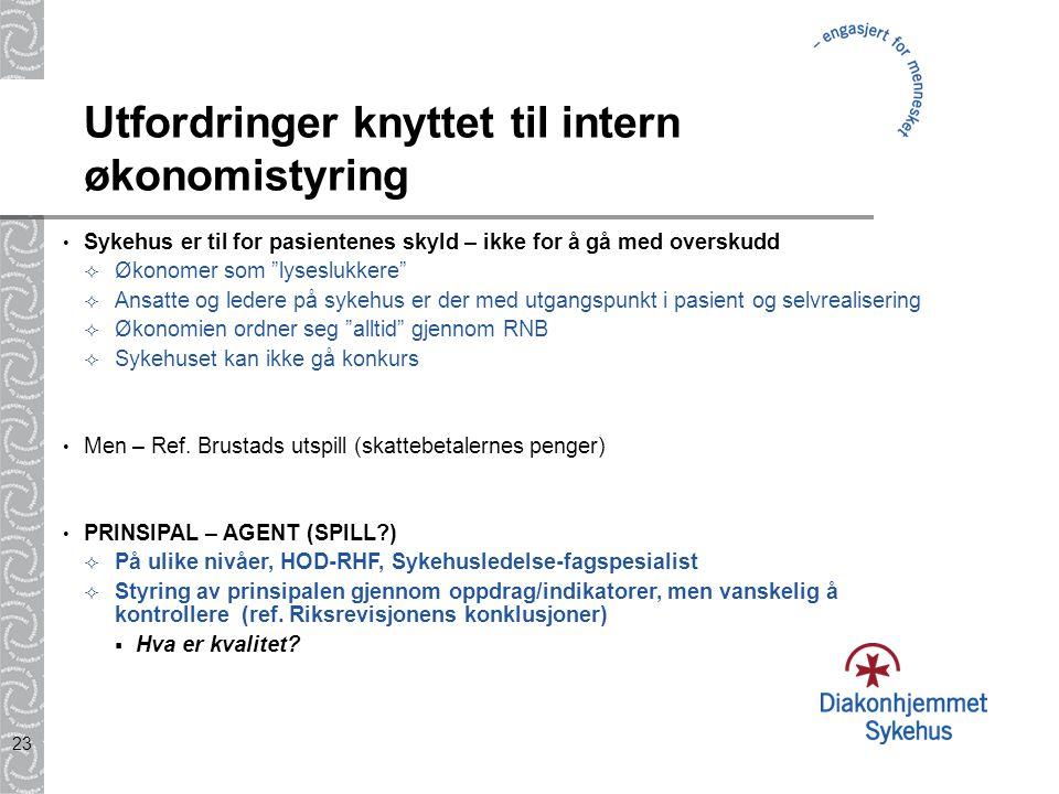 Utfordringer knyttet til intern økonomistyring