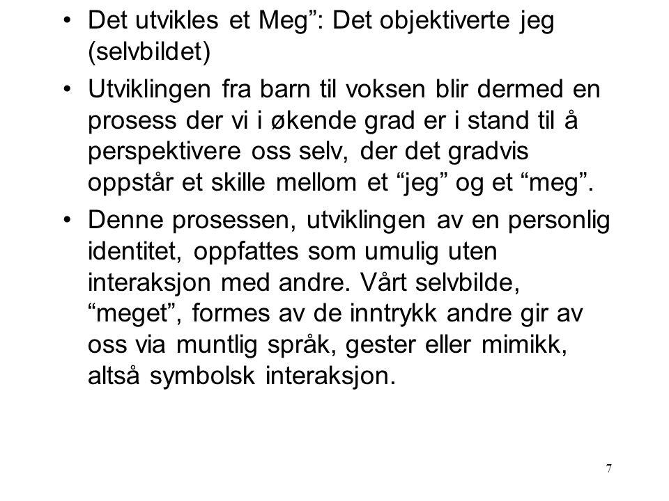 Det utvikles et Meg : Det objektiverte jeg (selvbildet)