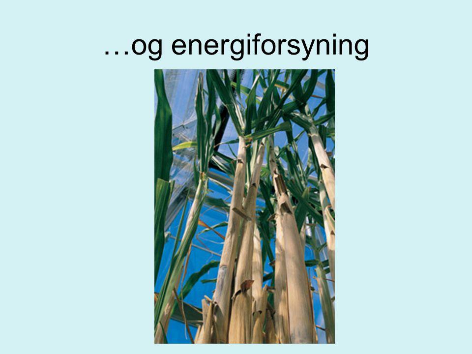 …og energiforsyning