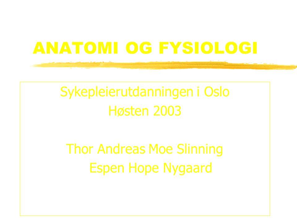 ANATOMI OG FYSIOLOGI Sykepleierutdanningen i Oslo Høsten 2003