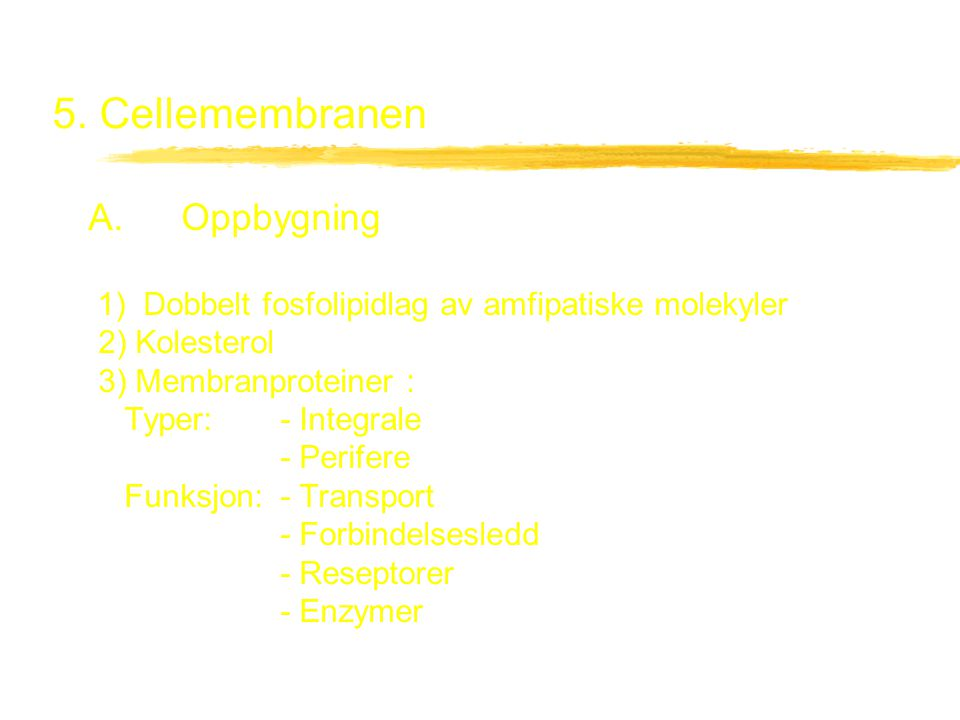 5. Cellemembranen A. Oppbygning