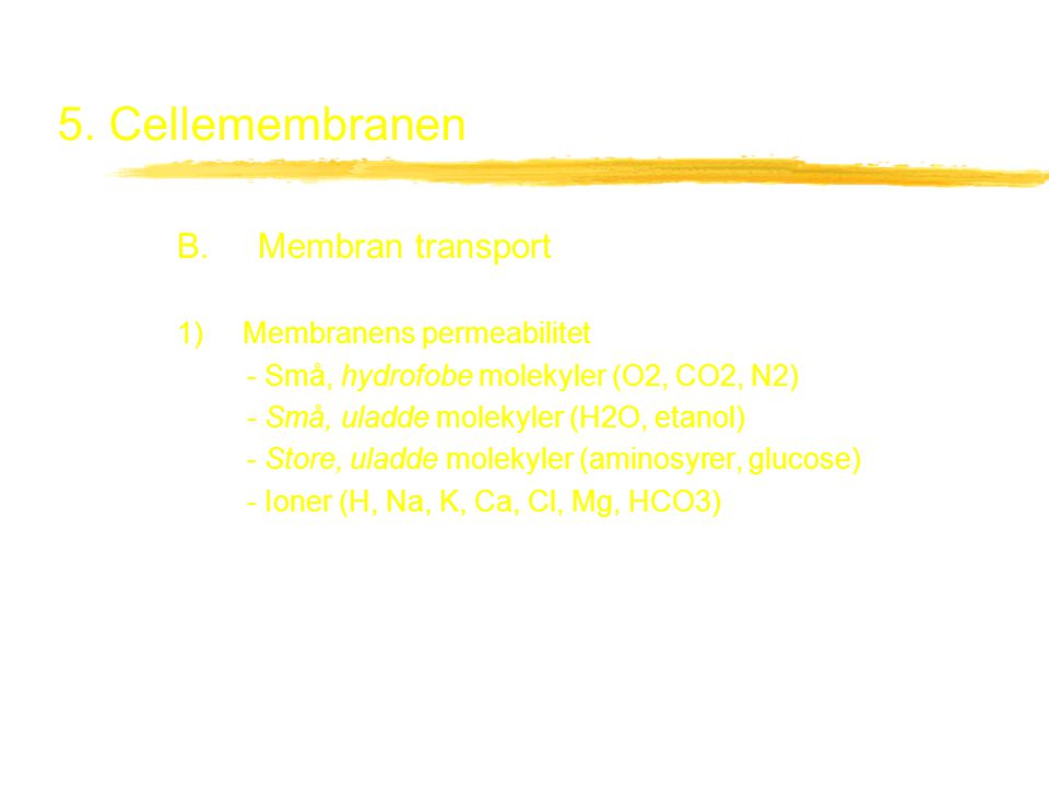 5. Cellemembranen B. Membran transport 1) Membranens permeabilitet