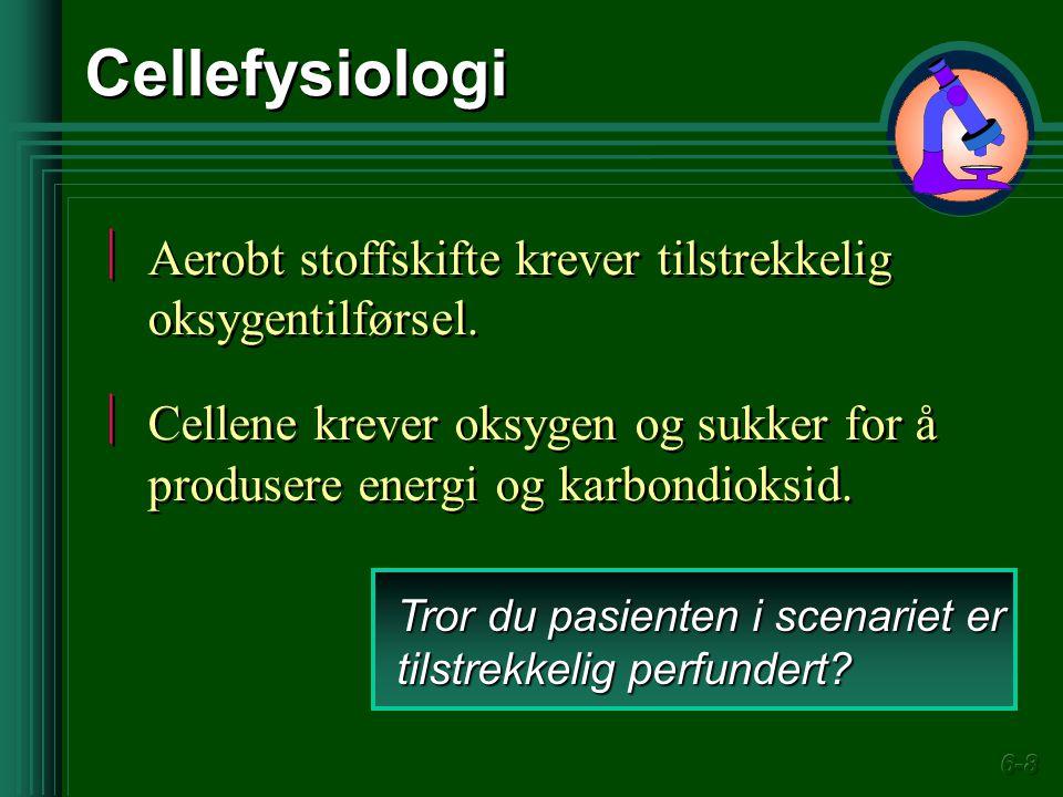 Cellefysiologi Aerobt stoffskifte krever tilstrekkelig oksygentilførsel. Cellene krever oksygen og sukker for å produsere energi og karbondioksid.