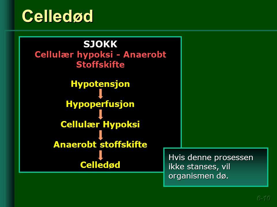 Cellulær hypoksi - Anaerobt Stoffskifte