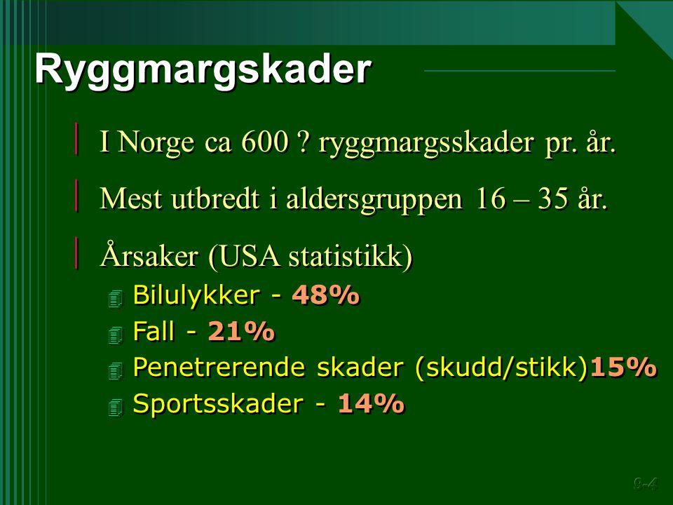 Ryggmargskader I Norge ca 600 ryggmargsskader pr. år.