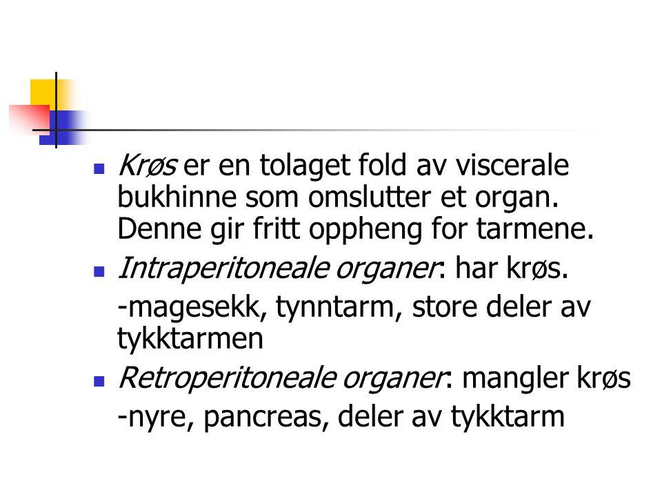 Krøs er en tolaget fold av viscerale bukhinne som omslutter et organ