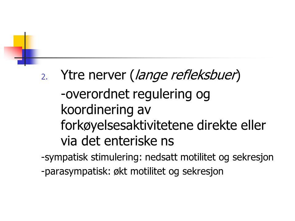 Ytre nerver (lange refleksbuer)