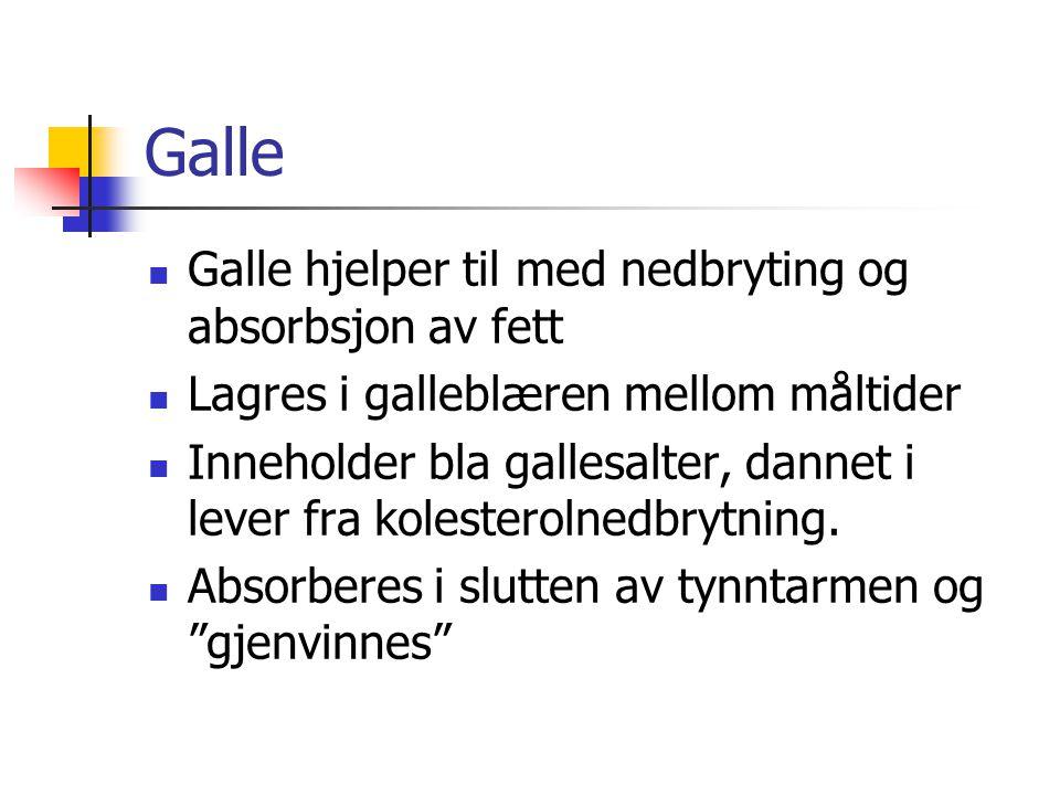 Galle Galle hjelper til med nedbryting og absorbsjon av fett