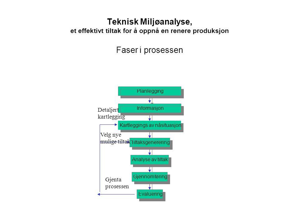 Teknisk Miljøanalyse, et effektivt tiltak for å oppnå en renere produksjon