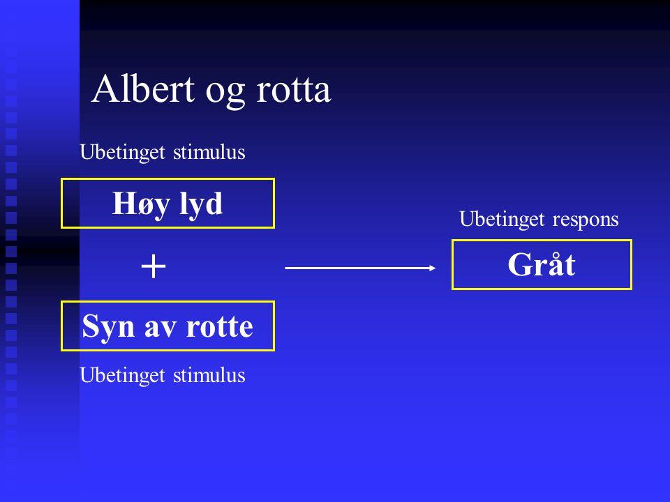 + Albert og rotta Høy lyd Gråt Syn av rotte Ubetinget stimulus