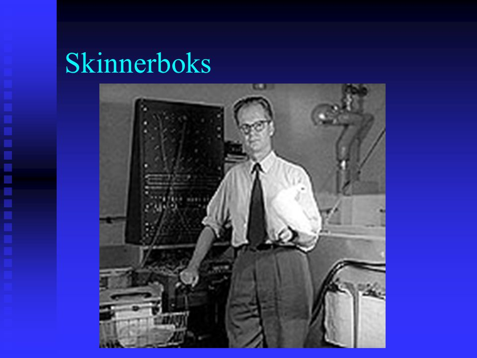 Skinnerboks