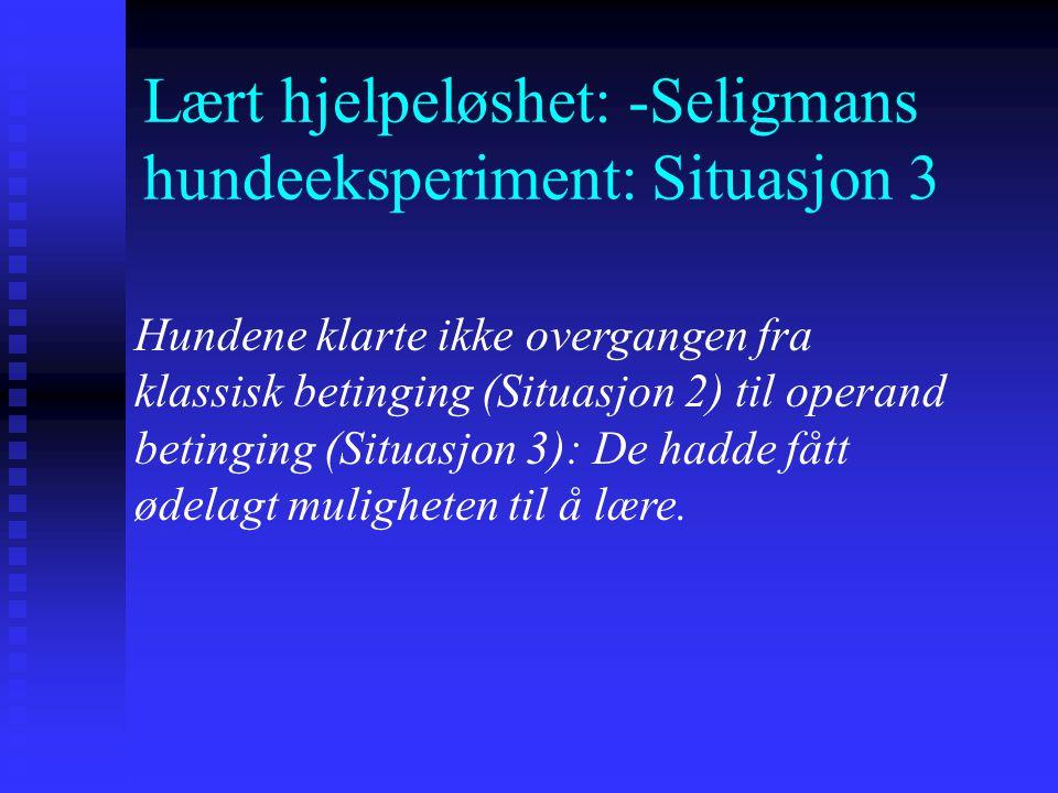 Lært hjelpeløshet: -Seligmans hundeeksperiment: Situasjon 3
