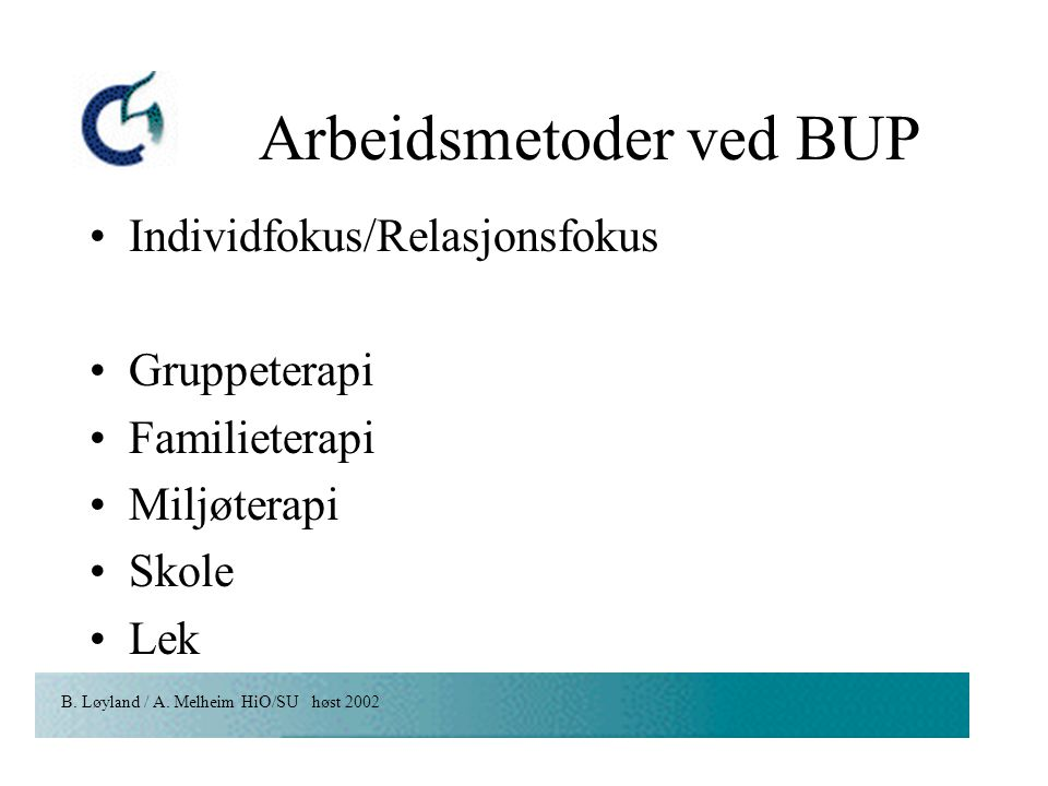 Arbeidsmetoder ved BUP