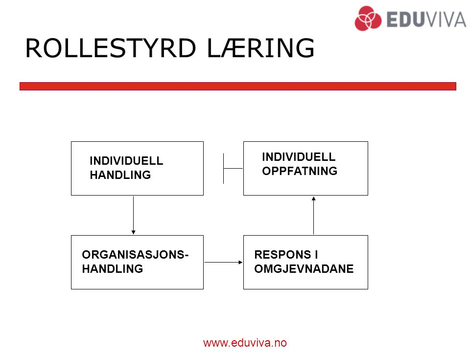 ROLLESTYRD LÆRING INDIVIDUELL OPPFATNING INDIVIDUELL HANDLING