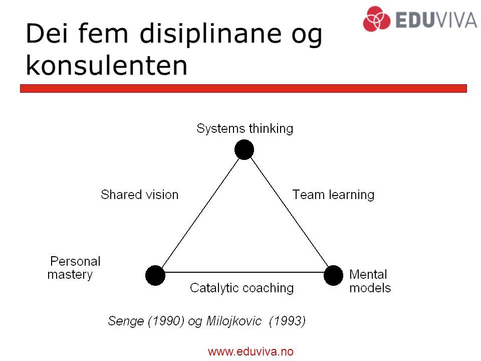 Dei fem disiplinane og konsulenten
