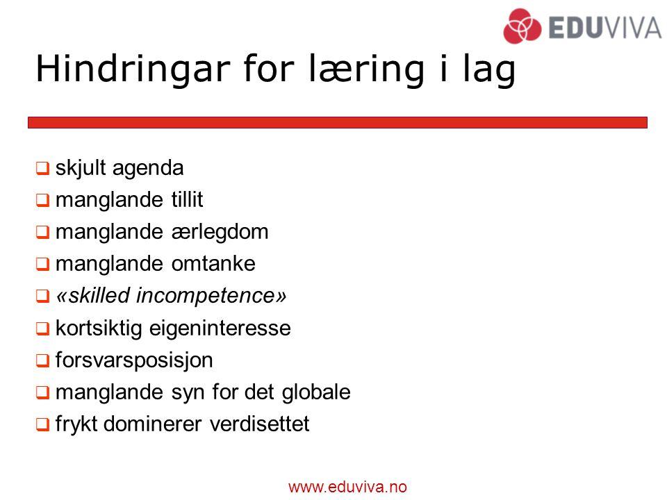 Hindringar for læring i lag