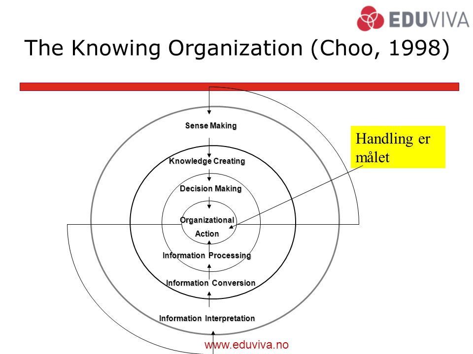 The Knowing Organization (Choo, 1998)