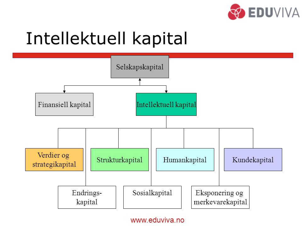 Intellektuell kapital