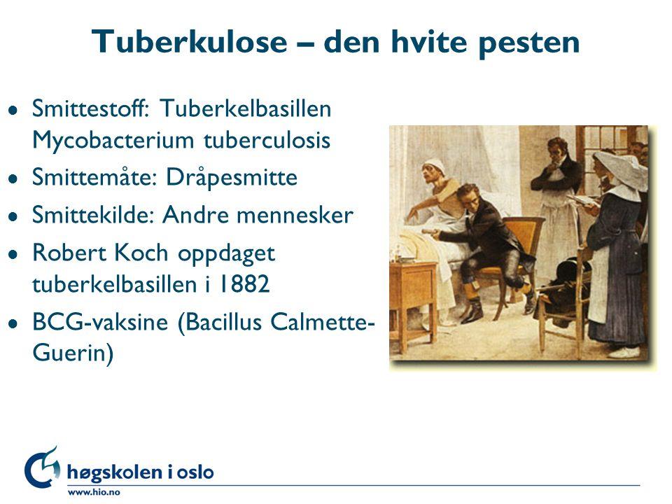 Tuberkulose – den hvite pesten
