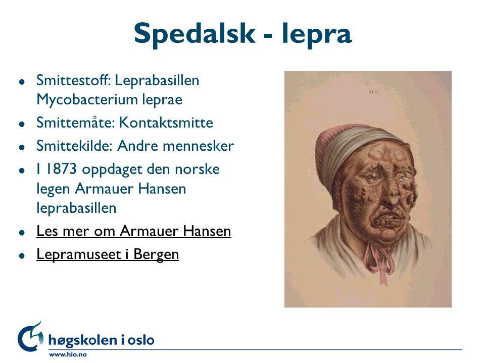Spedalsk - lepra Smittestoff: Leprabasillen Mycobacterium leprae