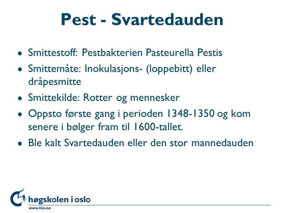 Pest - Svartedauden Smittestoff: Pestbakterien Pasteurella Pestis