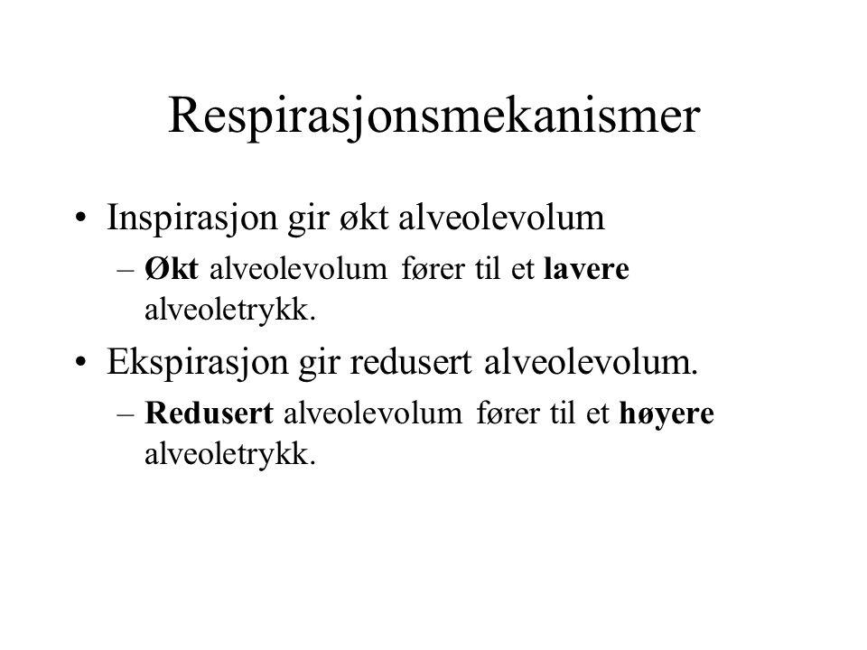 Respirasjonsmekanismer