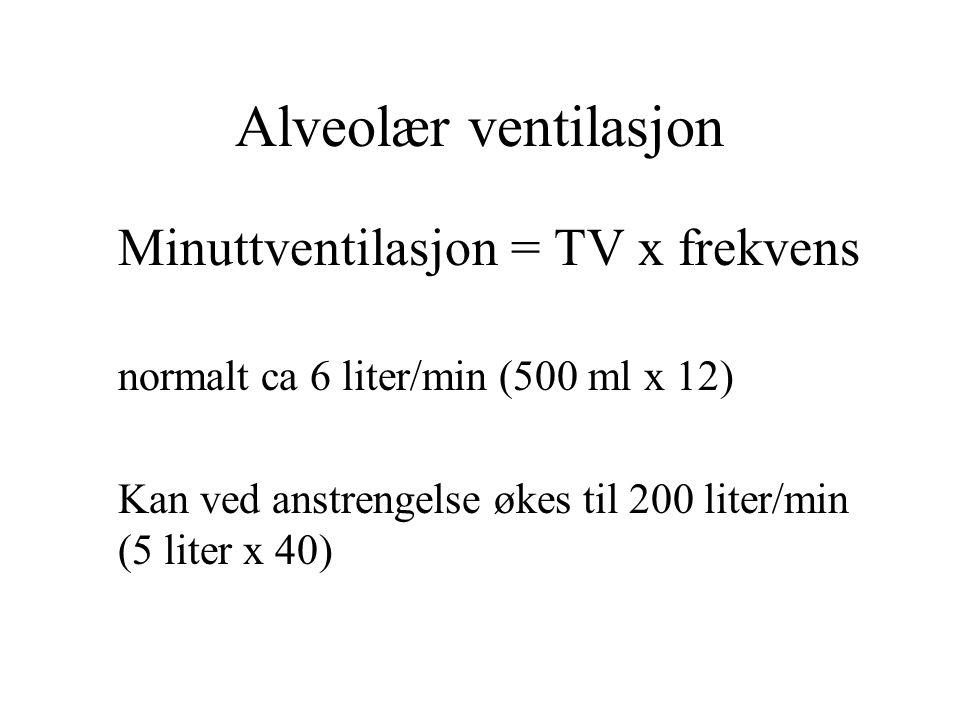 Alveolær ventilasjon Minuttventilasjon = TV x frekvens