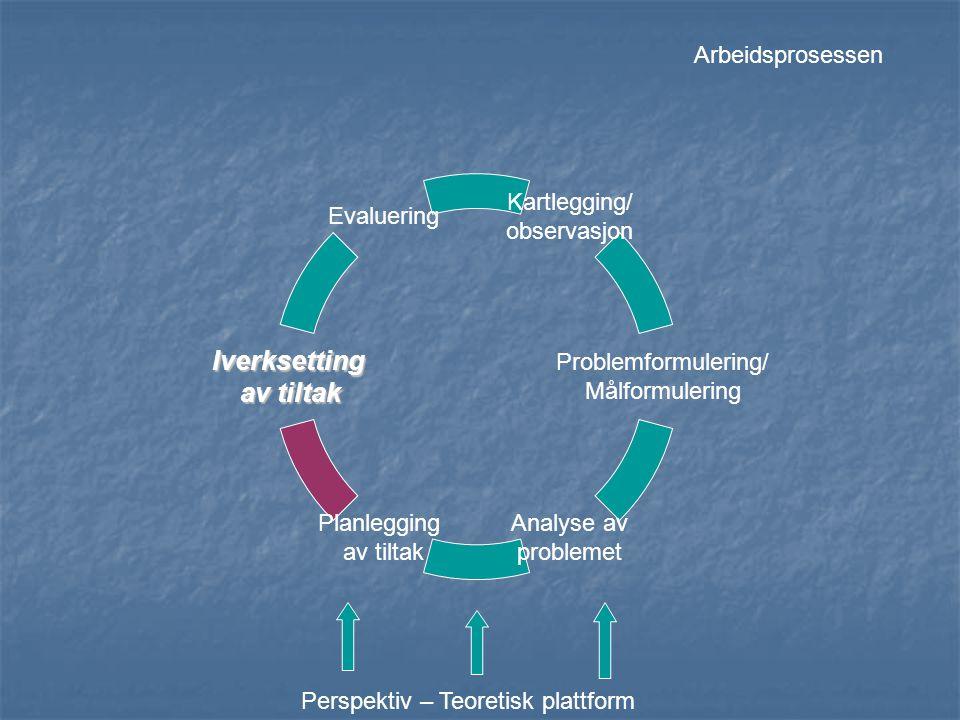 Arbeidsprosessen Perspektiv – Teoretisk plattform