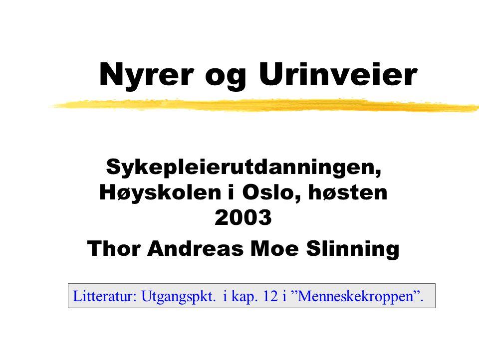 Nyrer og Urinveier Sykepleierutdanningen, Høyskolen i Oslo, høsten 2003. Thor Andreas Moe Slinning.