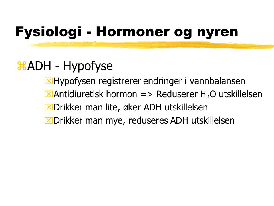 Fysiologi - Hormoner og nyren