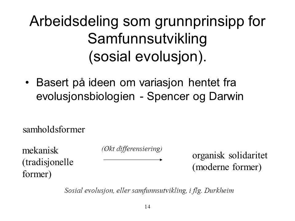 Arbeidsdeling som grunnprinsipp for Samfunnsutvikling (sosial evolusjon).