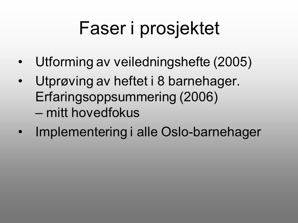 Faser i prosjektet Utforming av veiledningshefte (2005)