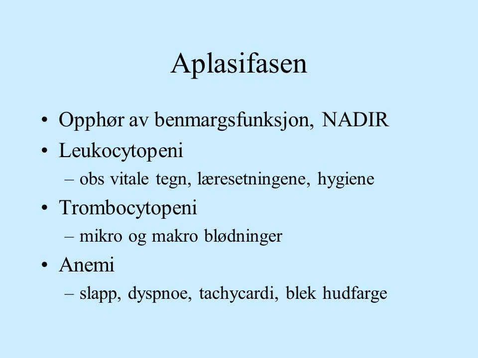 Aplasifasen Opphør av benmargsfunksjon, NADIR Leukocytopeni