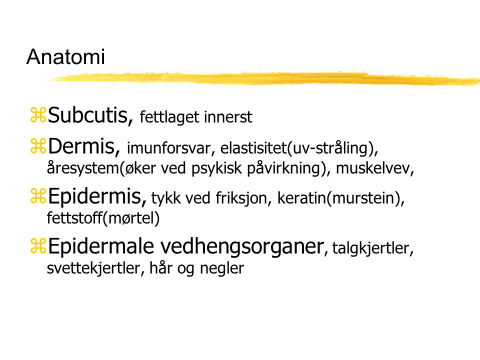 Anatomi Subcutis, fettlaget innerst. Dermis, imunforsvar, elastisitet(uv-stråling), åresystem(øker ved psykisk påvirkning), muskelvev,