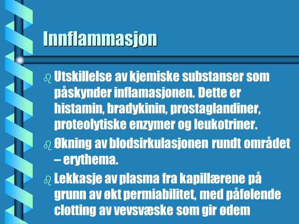 Innflammasjon