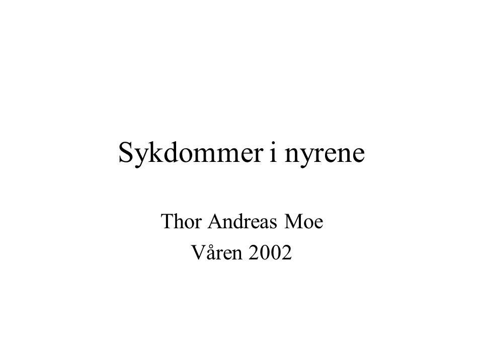Sykdommer i nyrene Thor Andreas Moe Våren 2002