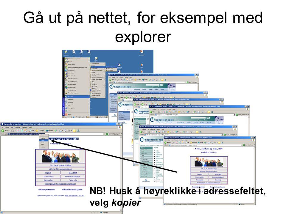 Gå ut på nettet, for eksempel med explorer