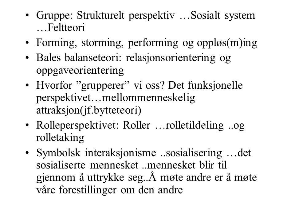 Gruppe: Strukturelt perspektiv …Sosialt system …Feltteori