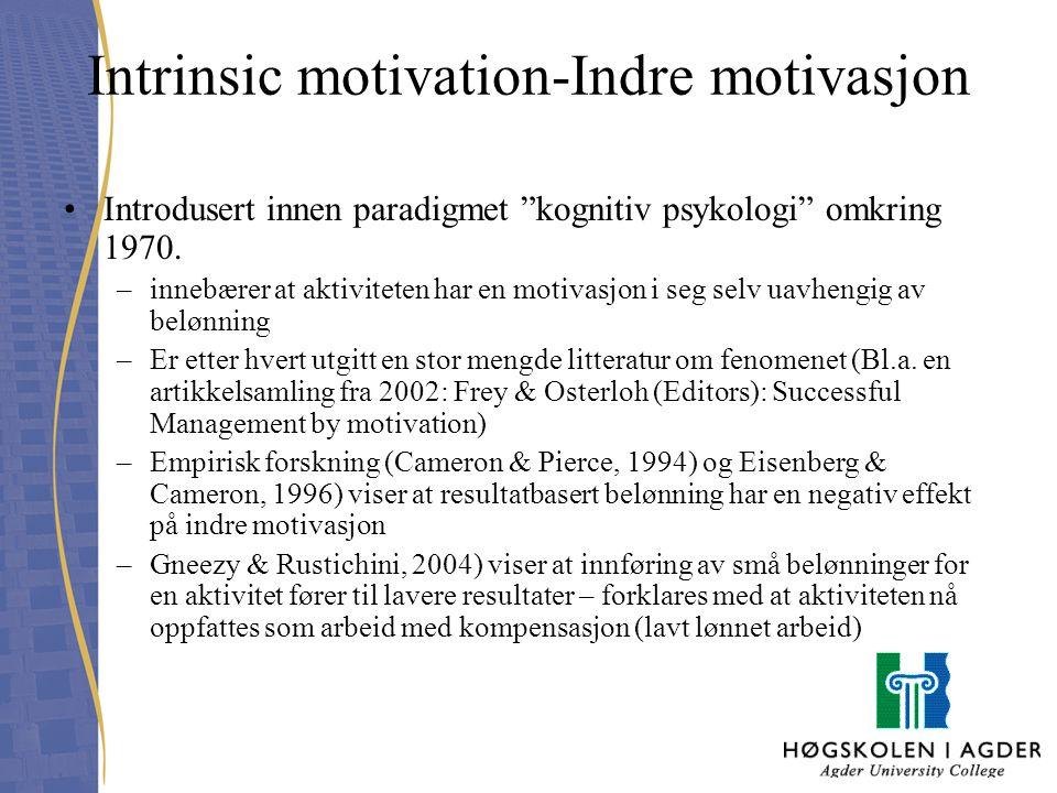 Intrinsic motivation-Indre motivasjon