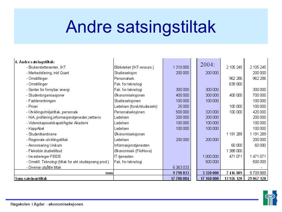 Andre satsingstiltak 2004: Høgskolen i Agder - økonomiseksjonen