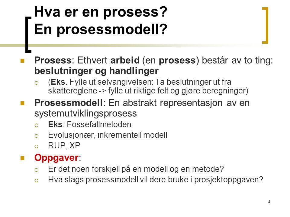 Hva er en prosess En prosessmodell